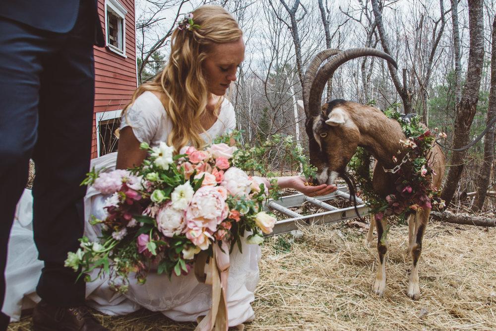 ten_apple_wedding-438.jpg