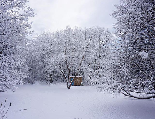 Little coop in a winter wonderland 💙🦃 . . . #littlecoopontheprairie #mainewinter #happythanksgiving #bluedoor