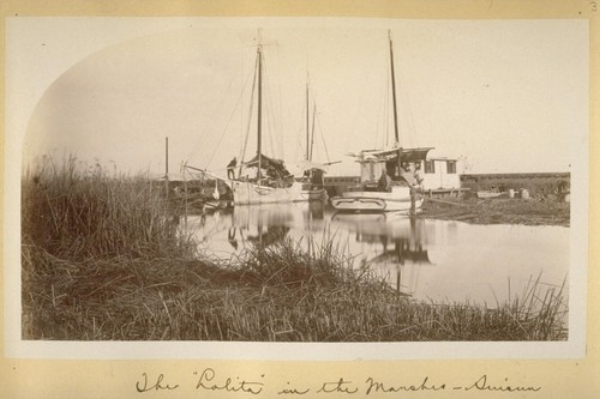 The Lolita in the Marshes--Suisun. 1881. Image in care of UC Berkeley, The Bancroft Library, Harry Babcock Photograph Albums, Volume 1