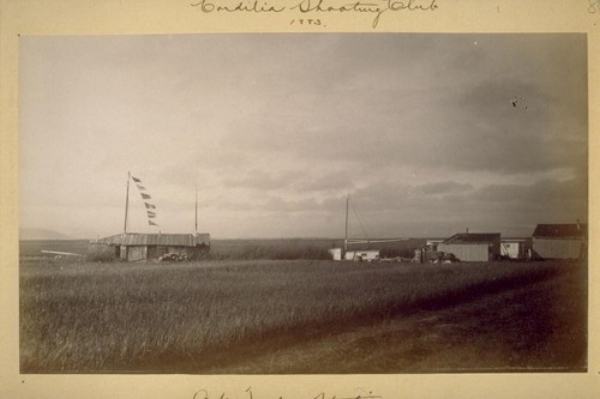 At Teal Station. Suisun Marshes. 1883. Image in care of UC Berkeley, The Bancroft Library, Harry Babcock Photograph Albums, Volume 2