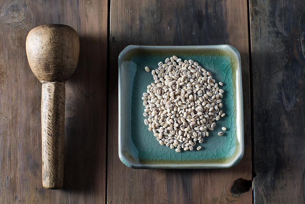 Barley (1 of 1).jpg
