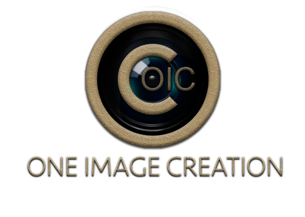 LOGO WITH LENS.png