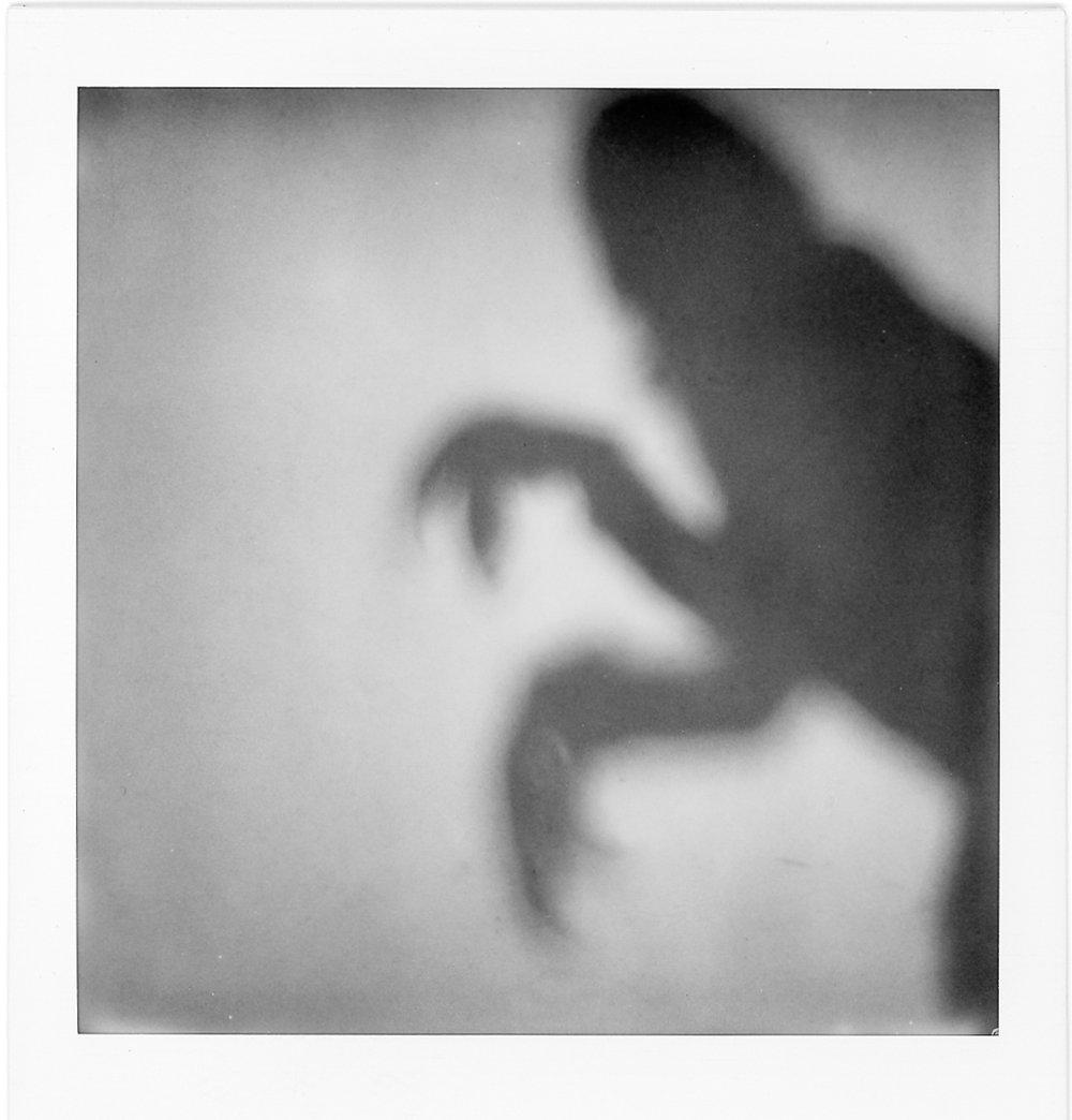 shadowpol_.jpg