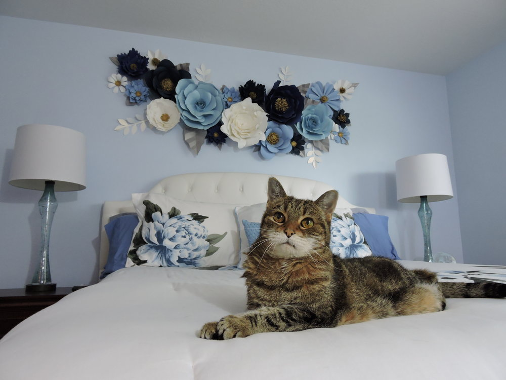 Tinkerbell (15) claims her rightful spot on the bed.