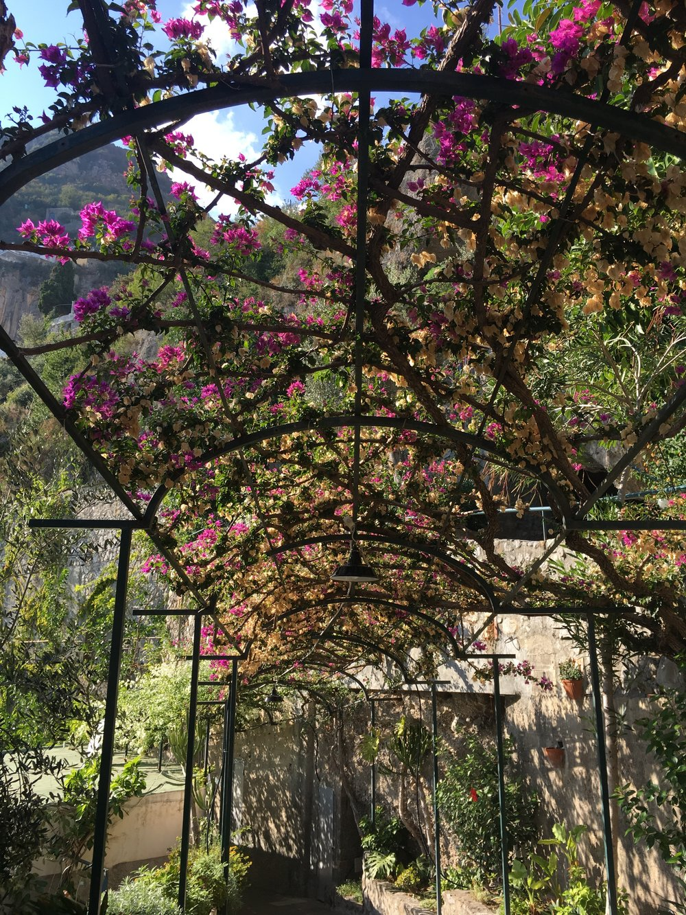 Day 4 - Positano 🍋 — Rosé & Roam