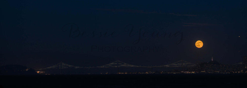San Francisco 2016 - Bessie Young Photography-107 pano.jpg