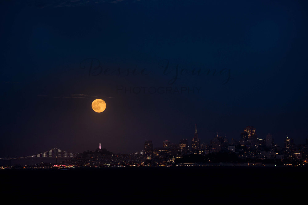 San Francisco 2016 - Bessie Young Photography-118.jpg