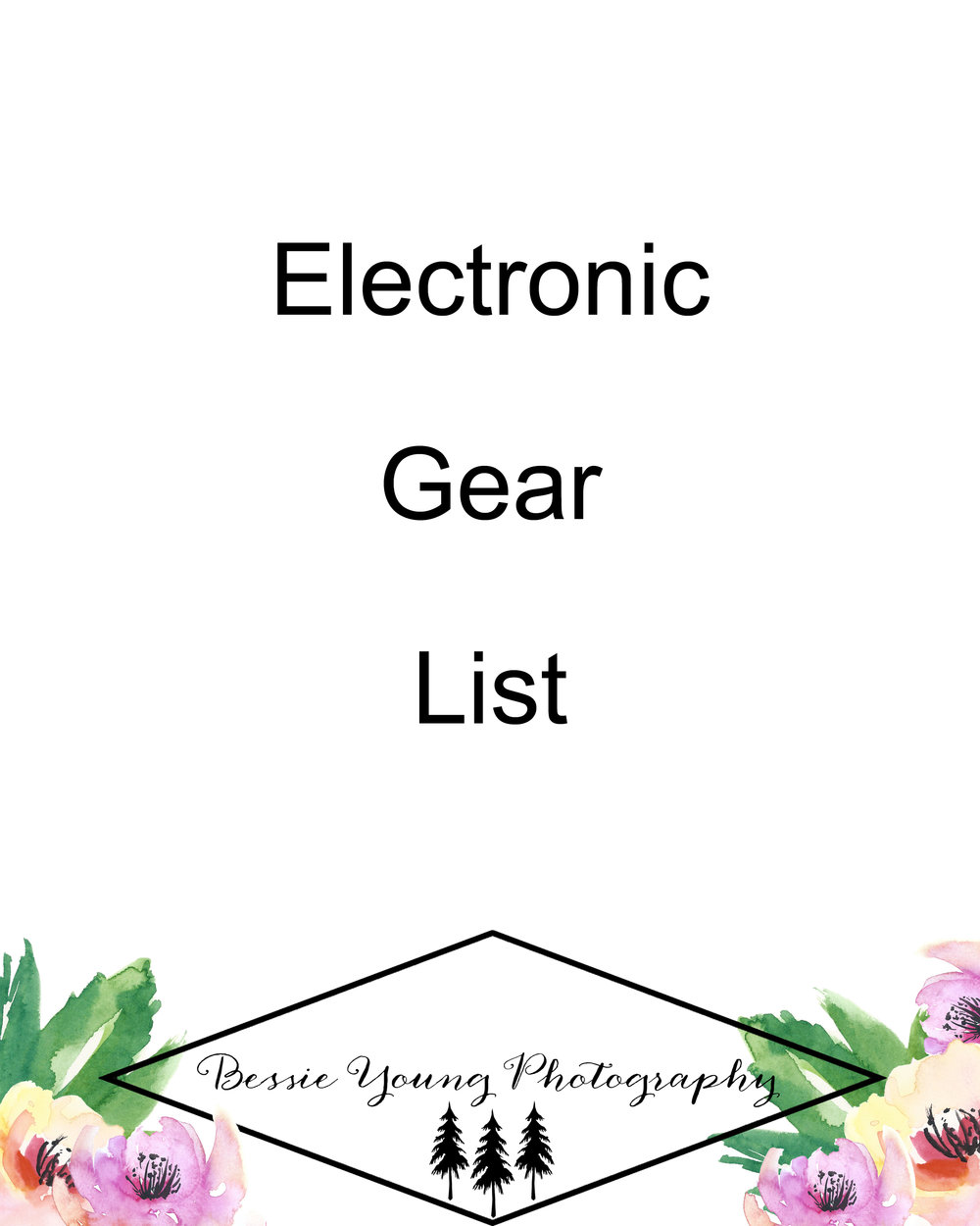 Electronic Gear List