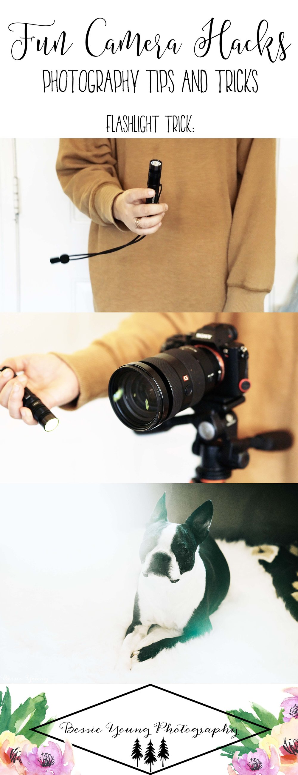 5 Fun Camera Hacks in Minutes - Photography Tips and Tricks by Bessie Young Photography