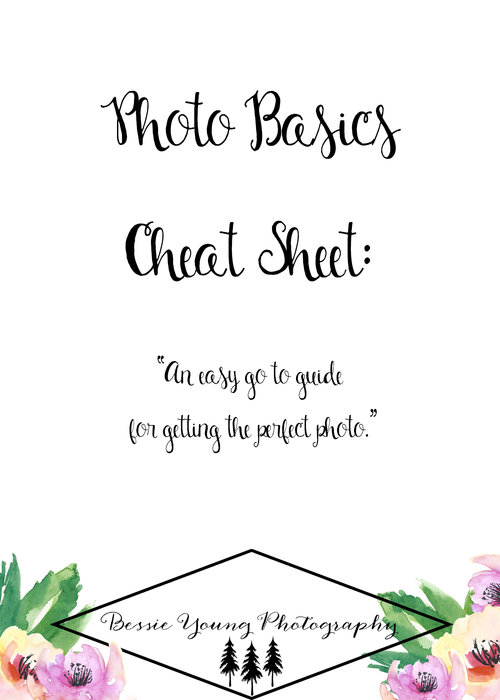 Free Photo Basics Cheat Sheet! Learning Photography? If you are trying to learn manual mode or are just dabbling in it, this cheat sheet is for you! It is going to make life easy.  An easy go to guide for getting the perfect photo. Completely Free!