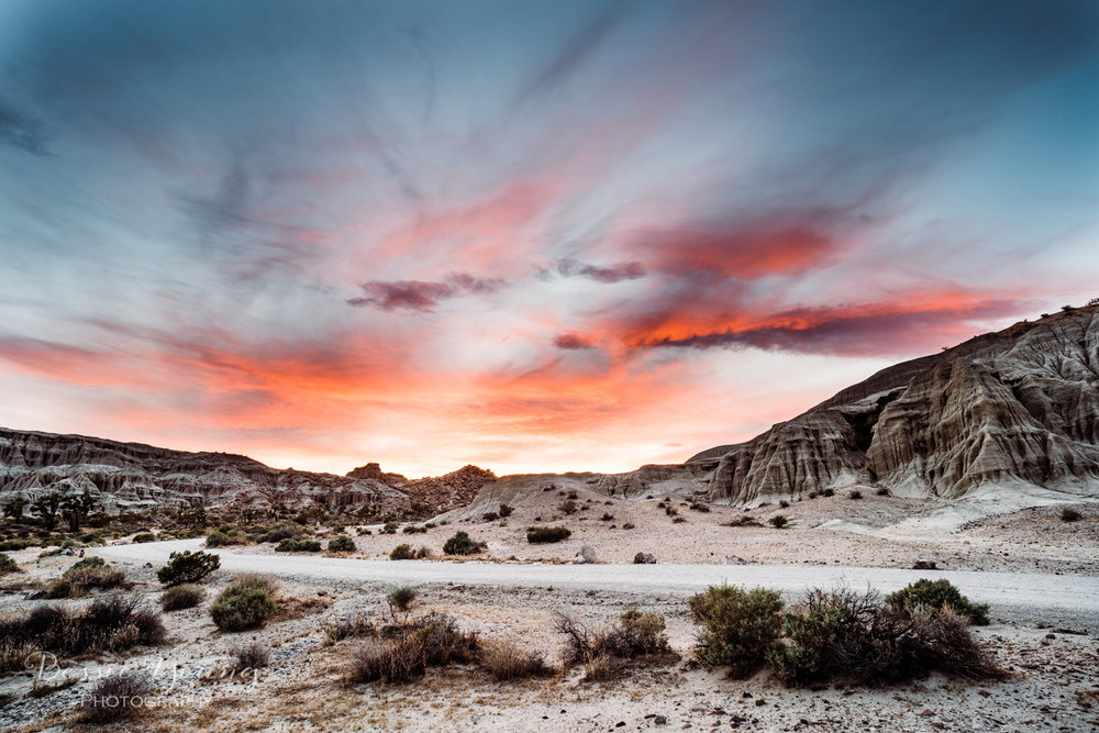 Red Rock Canyon Mojave Desert- Bessie Young Photography 2018-52.jpg