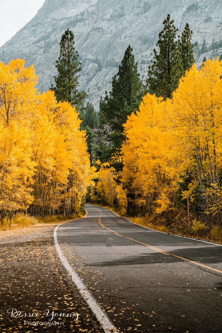 Fall Landscape Photography June Lake California by Bessie Young 13.jpg