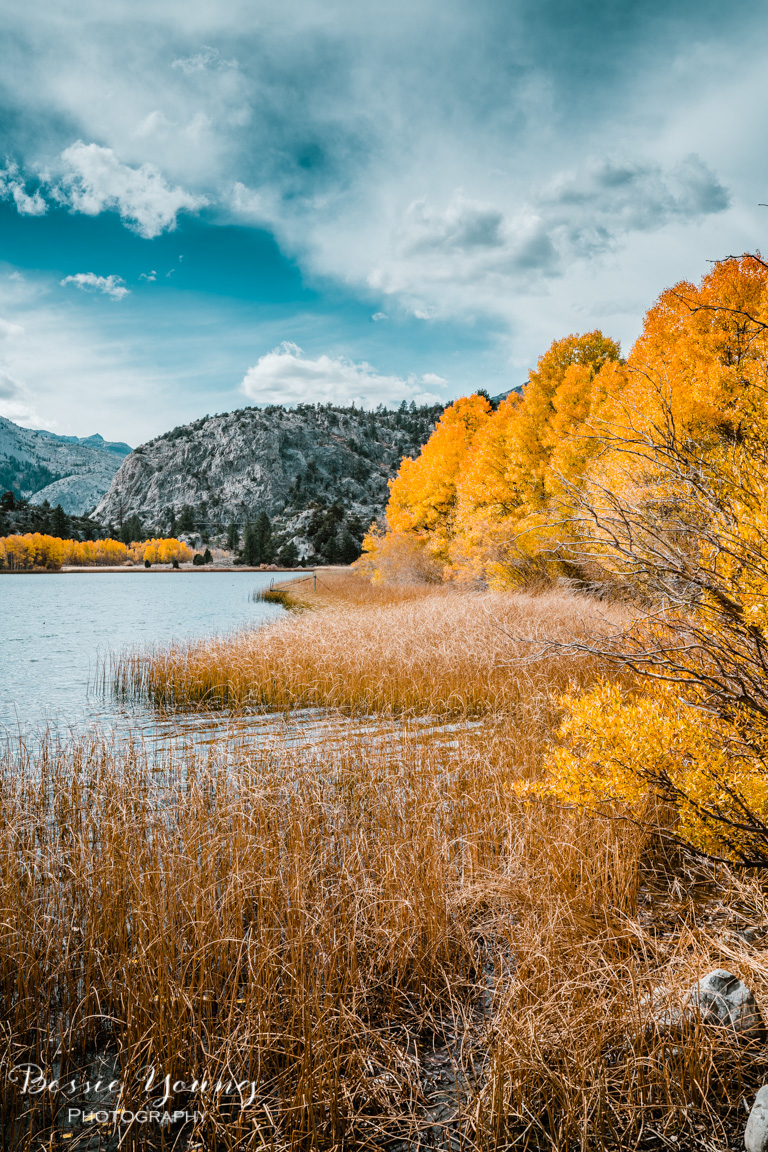Fall Landscape Photography June Lake California by Bessie Young 16.jpg