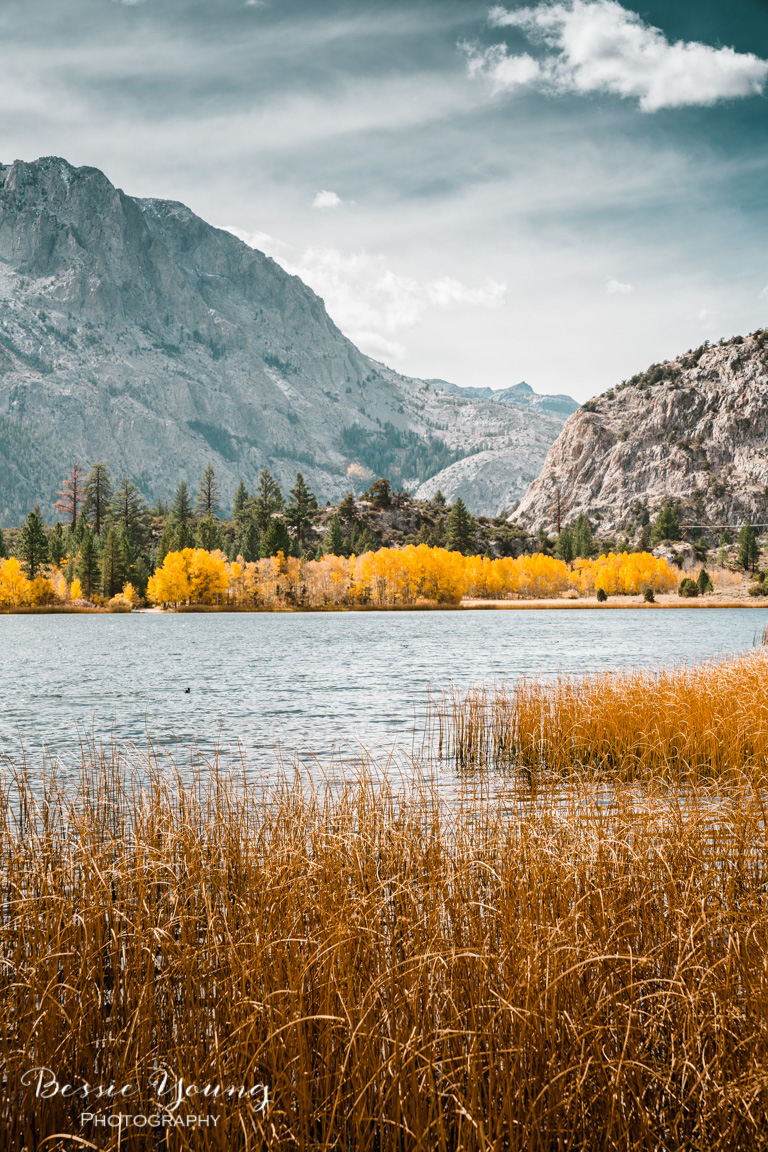Fall Landscape Photography June Lake California by Bessie Young 14.jpg