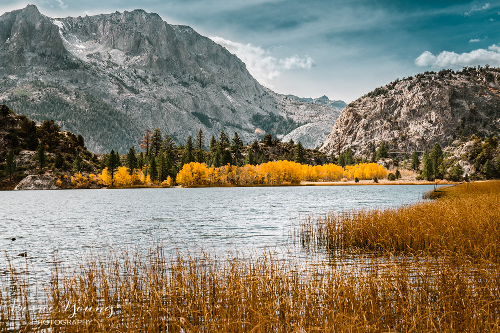 Fall Landscape Photography June Lake California by Bessie Young 15.jpg
