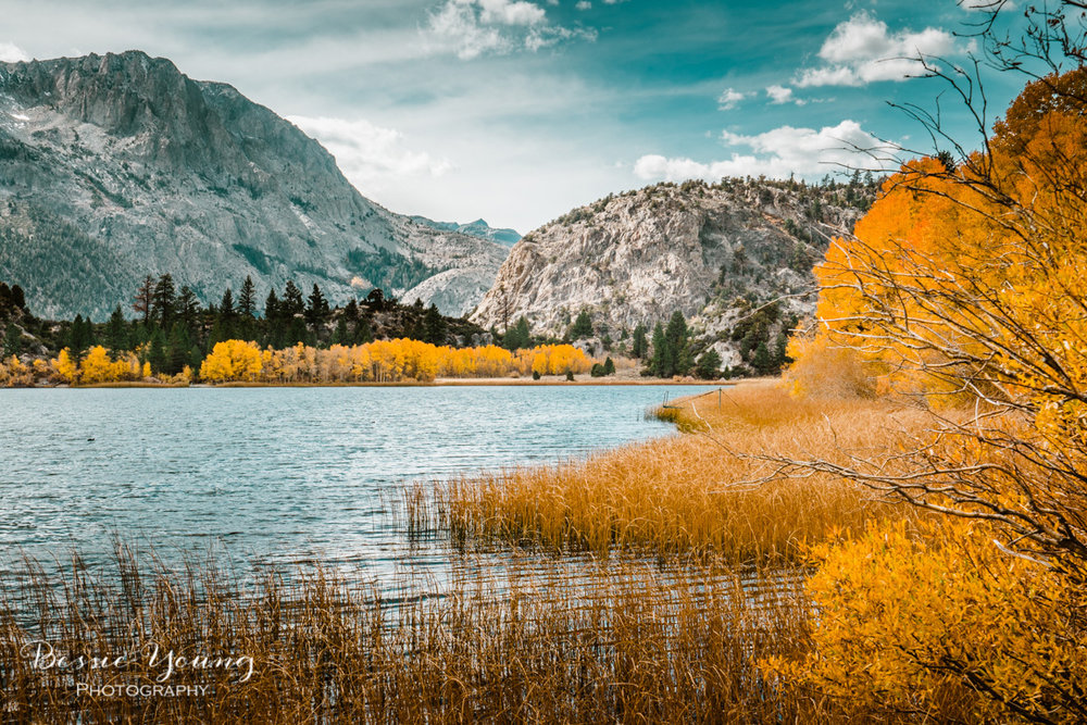 Fall Landscape Photography June Lake California by Bessie Young 7.jpg