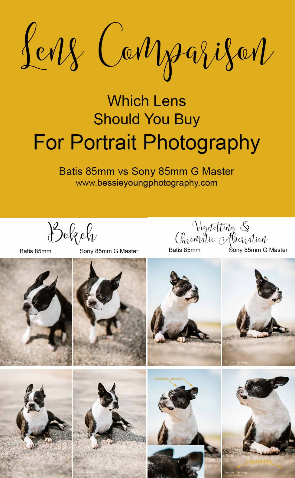 Batis 85mm vs Sony 85mm G master lens comparison Which Lens Should You Buy For Portrait Photography by Bessie Young Photography
