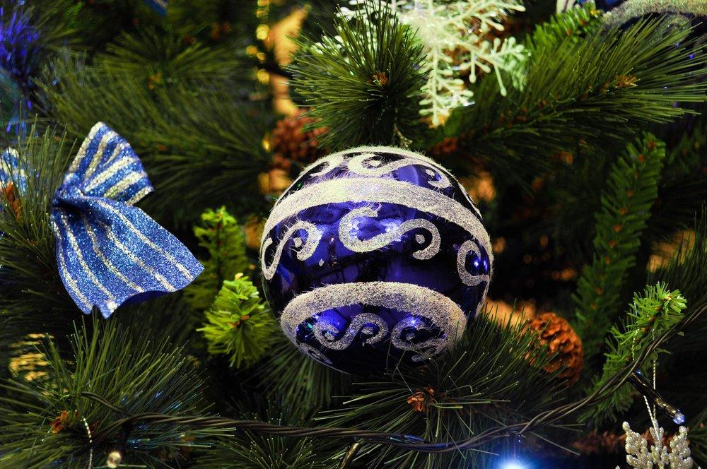 christmas-tree-1071936_1920.jpg