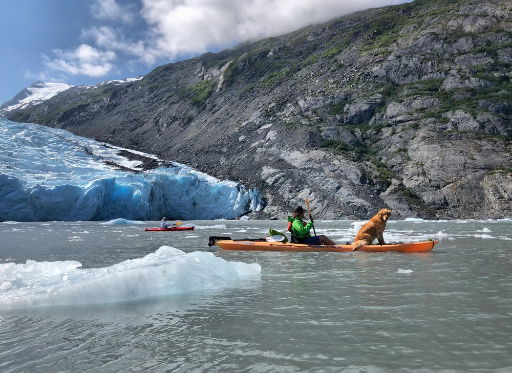 Kayaking Portage Lake out to Portage Glacier with the missions pastor from our home church.  The glacier calved as we watched from our kayaks.  It was incredible to see (and hear) this part of the world in motion.  And yes, that is a dog riding on the bow of that kayak.  It's how Alaskan dogs roll.