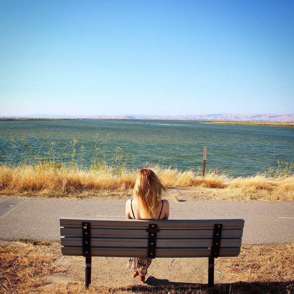 MB-bench.jpg