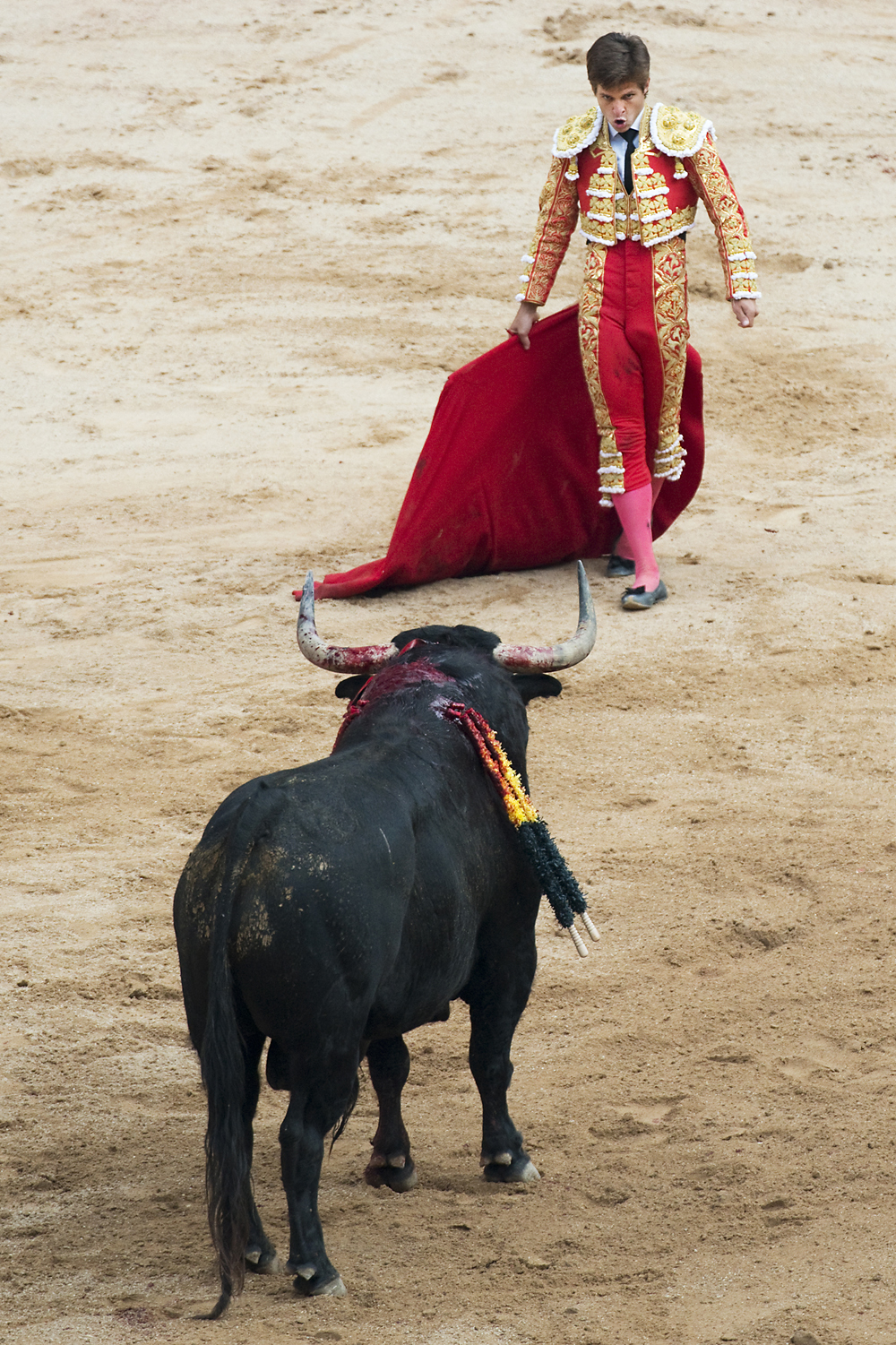 The matador and wounded bull face each other during the final act of a bullfight called  Tercio de Muerte  in Pamplona's Plaza de Toros, Spain, on Thursday, July 11, 2013. A bullfight occurs every evening throughout the week long festival of San Fermin.