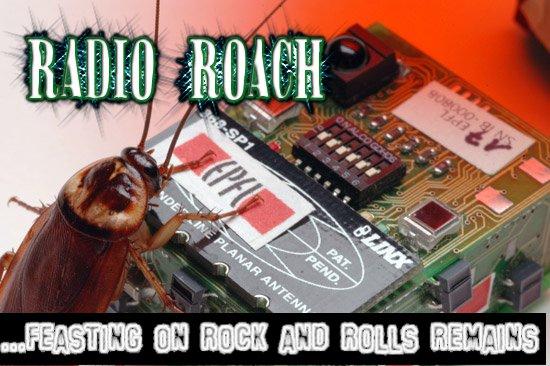 Radio Roach