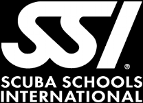 SSI-Logo-white.png