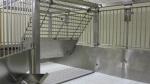 Rabbit Cage Interior