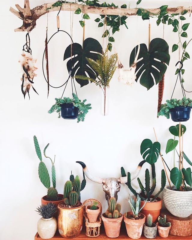 Bringing some vintage potted plant babies with us on Saturday to the @mojaveflea at the @freehandhotels 🌱 We'll be there from 10a-5p, come say hi!  Living for this entire vibe from @la_sidhu 💚 . . . . . . #mandanablvd #mandanamood #plantbaby #plantsofinstagram #plantsmakepeoplehappy #plantshelfie #plantstyling #bohostyle #urbanjungle #cactuslovers #desertstyle #popupshop #losangelespopup #losangelesvintage #lavintage #vintagepopup #mojaveflea #shopsmall #shoplocal #shopblack #shoplatinx #vintagestore #vintagelove #vintagelover #losangeles