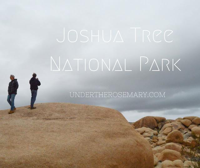 Joshua Tree National Park_banner.jpg