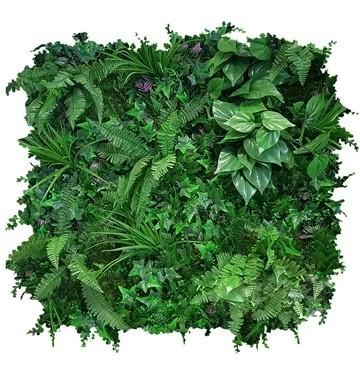EvergreenUrban-Hero-web.jpg