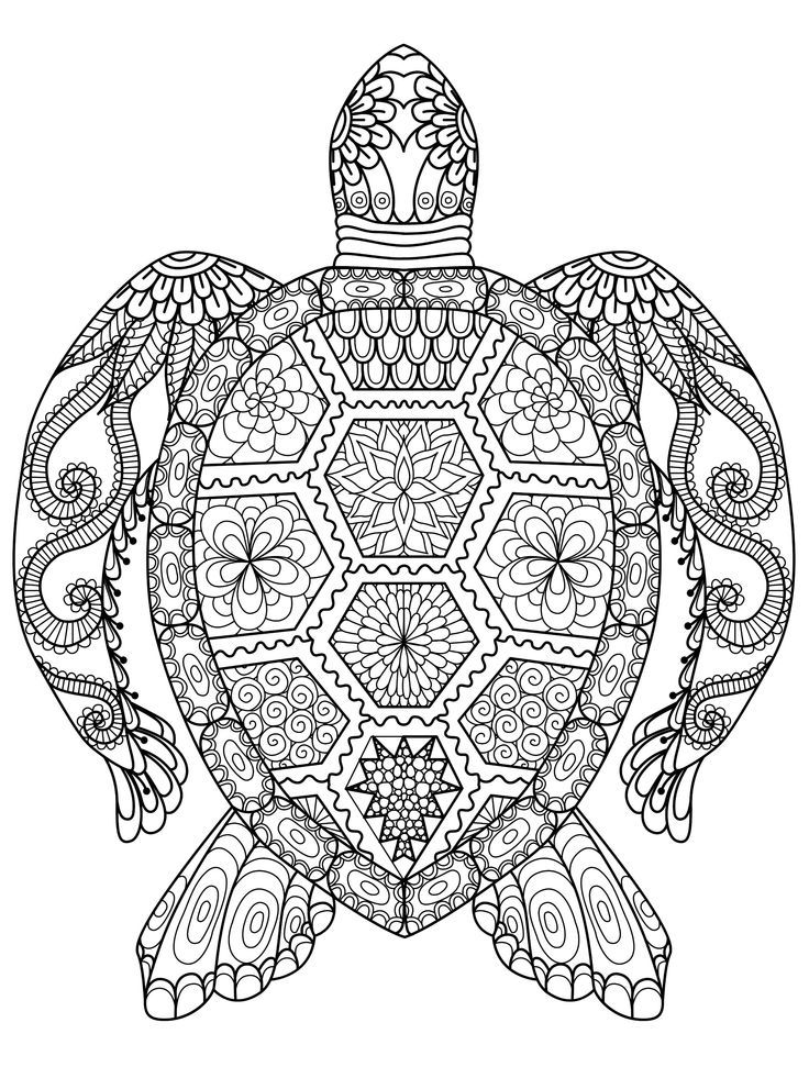 https://i.pinimg.com/736x/99/32/c0/9932c01d7265540872c9ab70c1f4264f--puzzle-books-coloring-for-adults.jpg