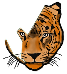 Tigerstripe Designs