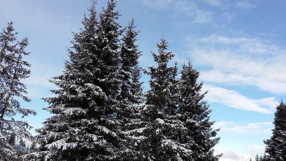13.02.2016 Rodičovská lyžovačka Stuhleck