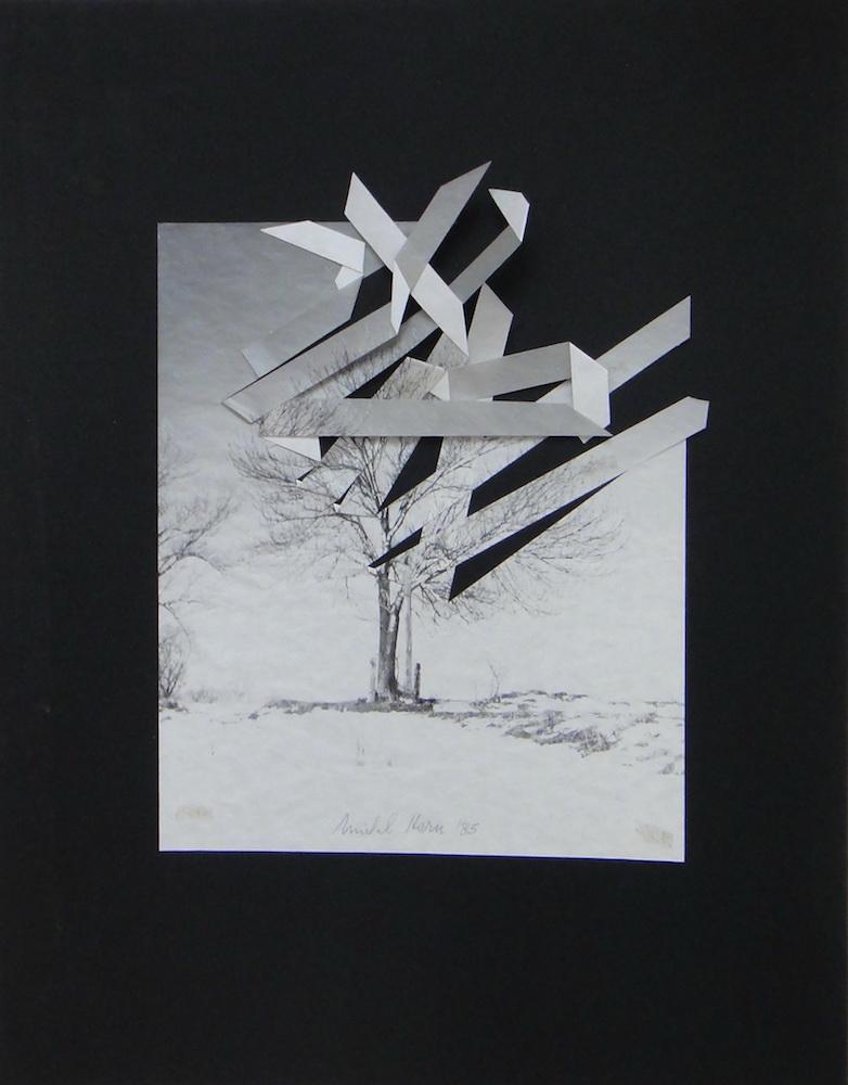 1985, Strom, rozstrihaná fotografia na čiernom papieri, 34x28, papier 59,5x46,5