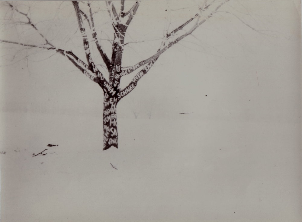 1971, Sneh, fotografia, 23x17 cm