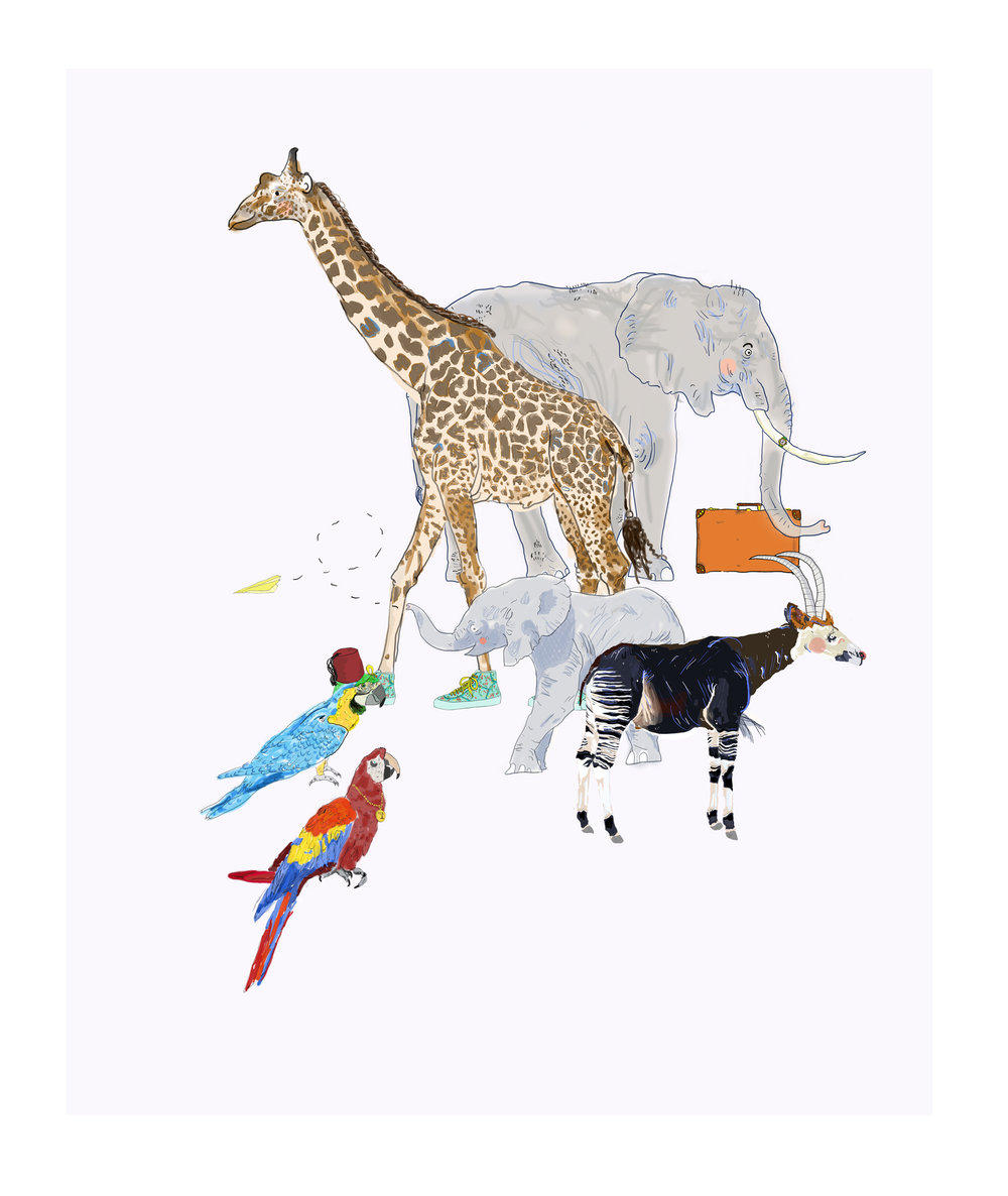 Animal illustrations (Queue for the Zoo)