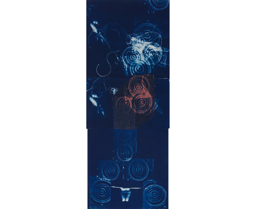 Quantum Corrals, 1997, Cyanotype, 50 x 20