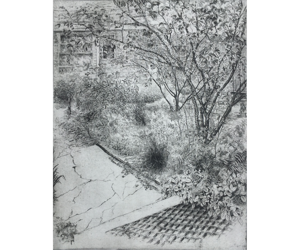 Backyard View from the Studio, 2001, Etching, 28 x 22