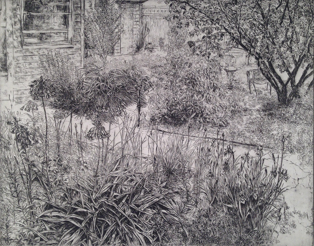 Backyard with Alliums, 2017, Etching, 16 x 20