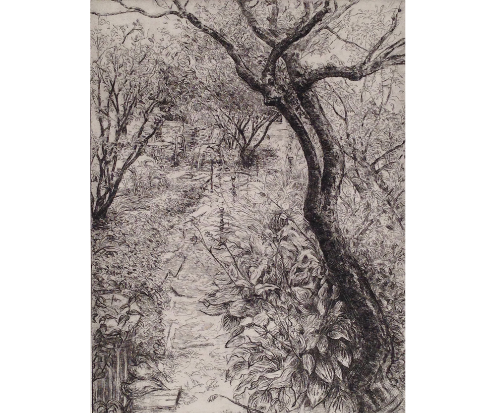 Path from Driveway, 2018, Etching, 16 x 12