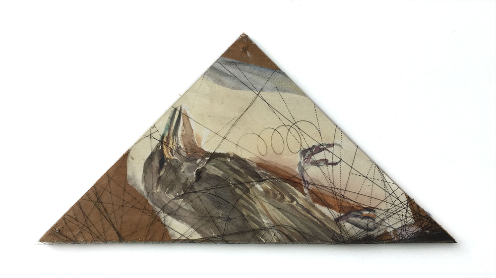 Triangle With Dead Bird, 2015, Watercolor Drawing and Acetate, 5 ½ x 9