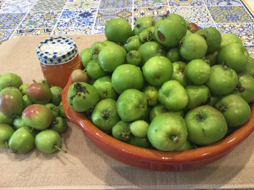 Make your own pectin using apples thinned from tree in early summer.