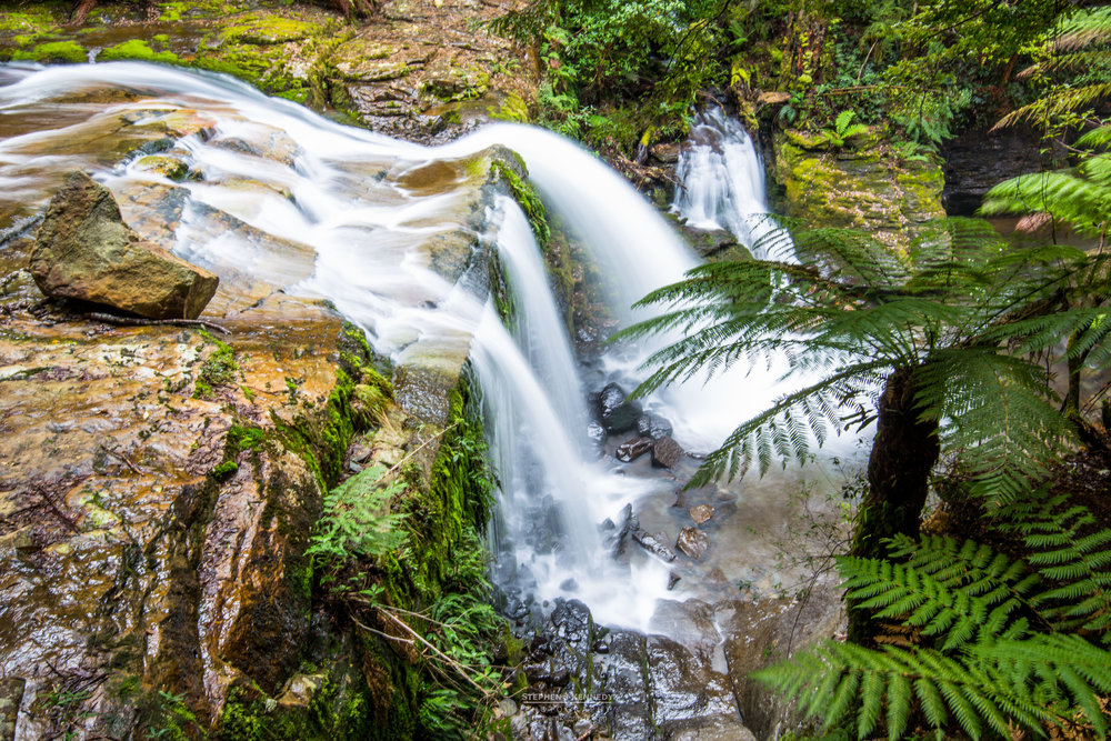 Liffey Falls - Middle Tier