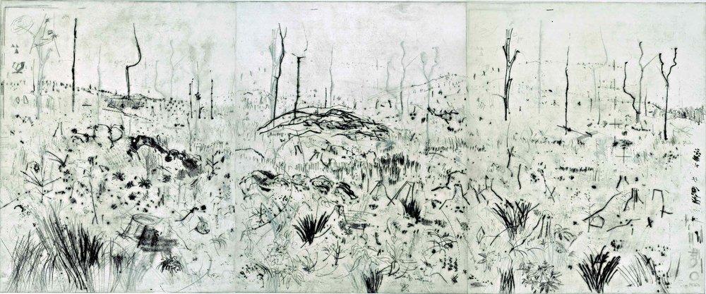 ForestryCloonbeg-(drypoint-print).jpg