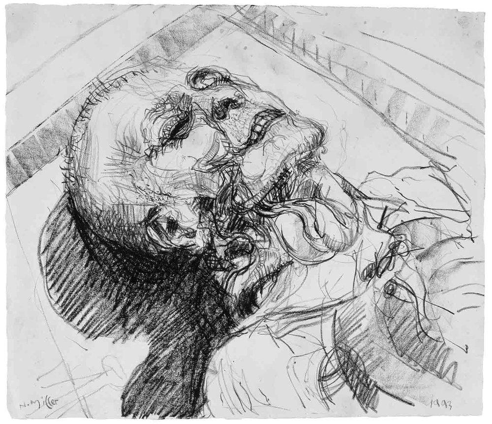 Anatomy-drawing1.jpg