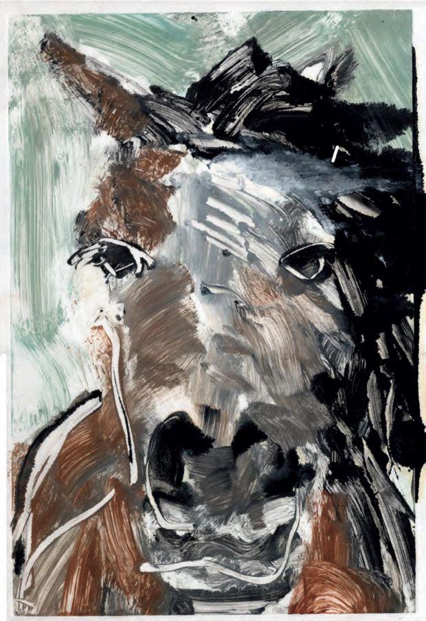 Pony Portrait III, Davis Lilburn