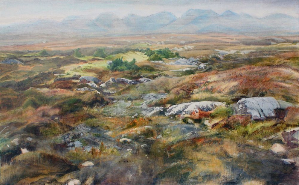 Bog & Mountains, Jim Savage