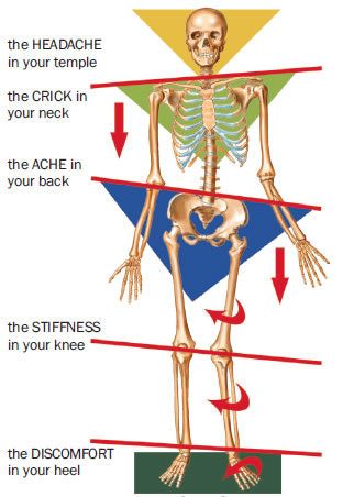 kinetic chain Biomechanics Brighton Hove Portslade