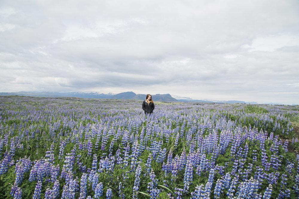 Iceland_0502.jpg